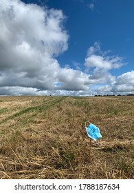 A discarded Coronavirus medical face mask discarded in the countryside, which has blow and become stuck on field stubble.