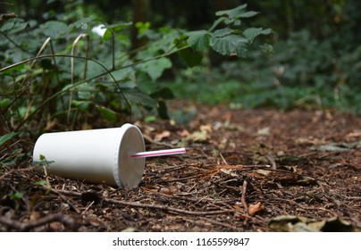 A discarded drink or soda container with plastic straw lies at the edge of a forest track