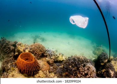 Discarded plastic bag drifts over a tropical coral reef causing a hazard to marine life such as turtles