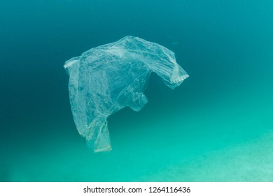 A discarded plastic bag drifts through the sea in Indonesia. Non-recyclable plastics eventually break down into tiny pieces, entering the ecosystem and harming the entire food chain.