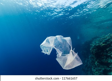 Discarded plastic bags floats in the sea next to a coral reef wa