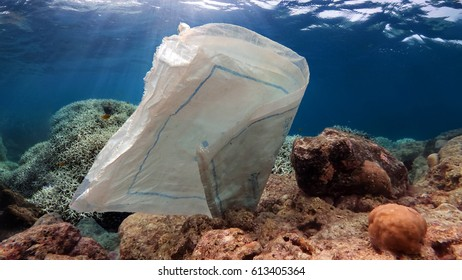 Discarded plastic sack on coral reef