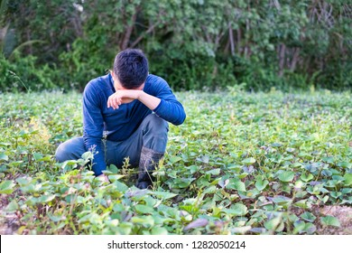 Discouraged farmer placing hand on forehead at agriculture field