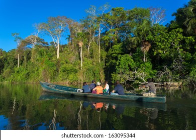 Discover the Amazon. Tambopata national park in Peru
