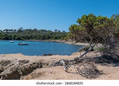 Discovery of the island of Porquerolles in summer. Deserted beaches and pine trees in this landscape of the French Riviera, Var.