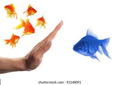 diskriminierende rassistische oder intolerante Konzepte mit Goldfisch und Hand