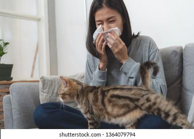 Krankheiten vom Konzept der Haustiere. Die Frau niesen von der Pelzallergie auf dem Sofa und spielt mit ihrer Katze.