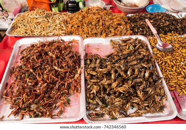 Disgusting Food Thailand Stock Photo (Edit Now) 742346560