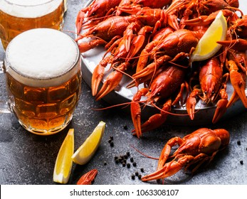 Dish with crayfish and a glass of beer on a gray background. horizontal Photo