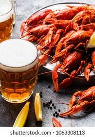 Dish with crayfish and a grass of beer on a gray background. Vertical Photo
