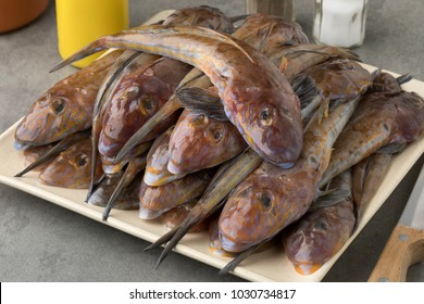 Dish with fresh cleaned raw flathead fishes