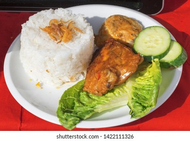Dish with Indonesian food, grilled chicken meat in Rujak sauce with cucumber, green leaves of lettuce and plain rice. Embassy Street Food Festival in Prague.