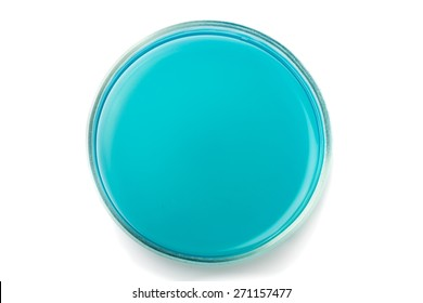 Dish, petri, white.