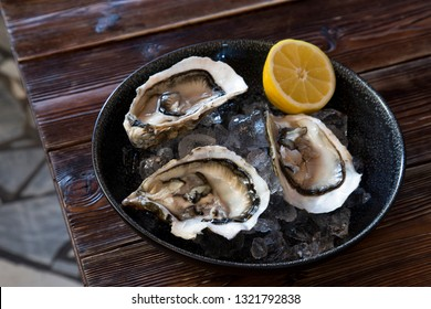 Dish of sea oysters with ice and lemon in a plate on a wooden table