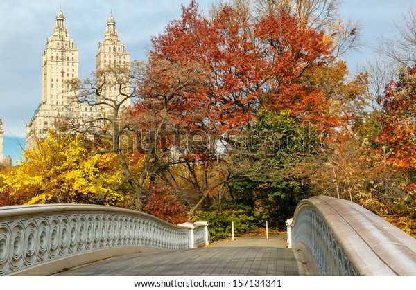 Display of autumn colors by the Bow Bridge in Central Park, with Upper West Side building behind the trees. New York.