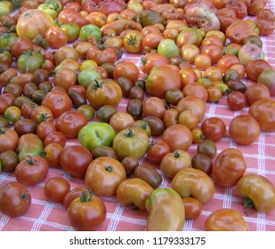 Display of Colorful Heirloom Tomatoes on Red and White Checkered Tablecloth