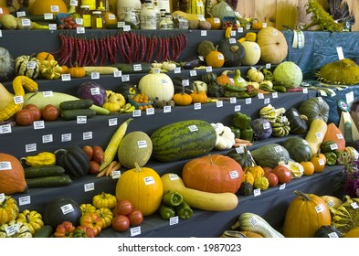 Display at a county agricultural fair