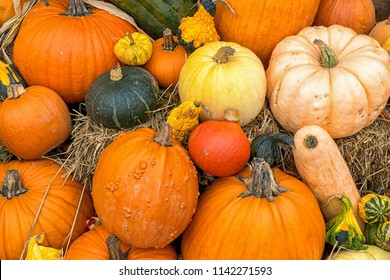 Display of fall gourds and pumpkins on bales of straw or hay.