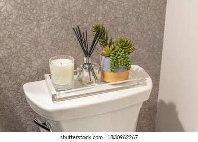 Display on top of a toilet water tank in a modern bathroom.