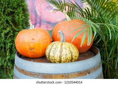 A display of pumpkins ona  wooden barrel outside a building