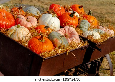 Display of a variety of colorful pumpkins sitting in hay on old farm equipment on sunny autumn morning