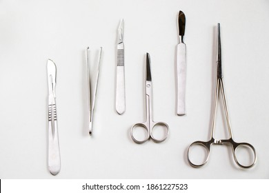 Dissection kit, stainless steel tools for medical students of anatomy, biology, veterinary, marine biology with scalpel blades. Operation equipment.