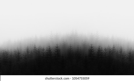 distant forest in black and white and copy space