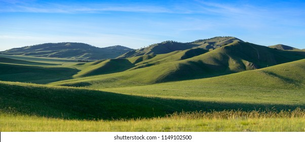 Distant hills. Hilly steppe. Curvy hills. Blue sky and grass. Beautiful plain. Sunny day and hills. Lowland. Hilly horizon.