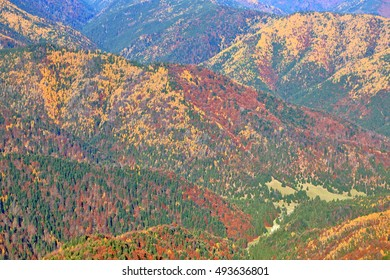 Distant hillsides covered with colorful trees in autumn