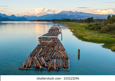 Distant mountains with logs on river.