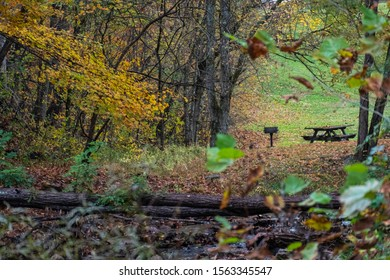 A distant picnic table in the woods
