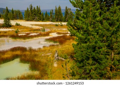 A distant view of West Thumb Geyser Basin in Yellowstone NP in Wyoming, shows each area exhibiting a different color. Yellowstone Lake is seen in the distance with evergreens partially blocking.