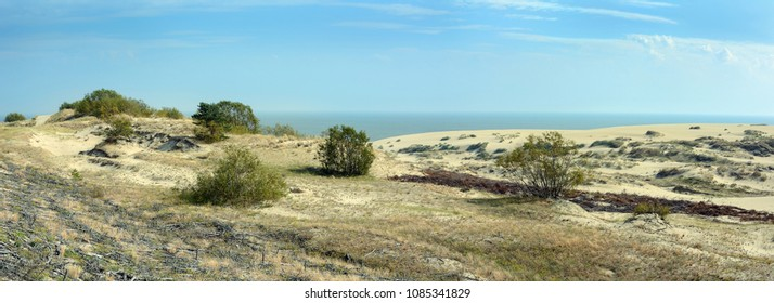 A distinctive landscape of sand dunes on the Curonian spit, the Kaliningrad region
