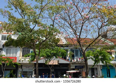 DISTRICT 1, SAIGON DOWNTOWN, HO CHI MINH CITY, VIETNAM - APRIL 2018: Tabebuia rosea flower along the road and old houses in the middle of dynamic modern city center