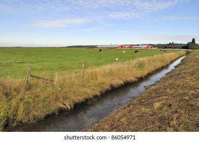 Ditch in a farm field