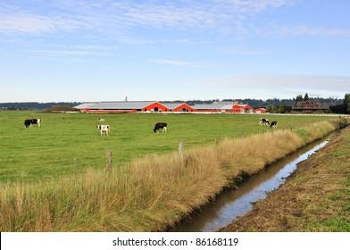 Ditch in a farm field