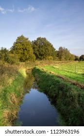 Ditch with vegetation in the Brabant nature reserve Dal van de Beerze