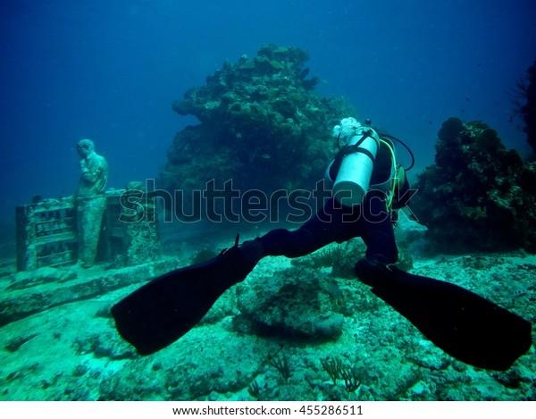 Dive in the Cancun Sea