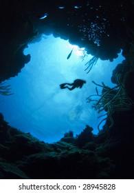 Diver at caribbean