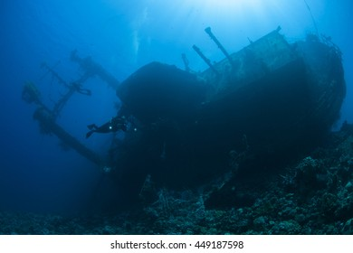 Diver and the Cedar Pride wreck.