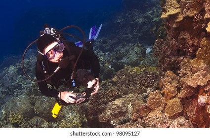 Diver checking out the Coral in Hawaii with a Camera