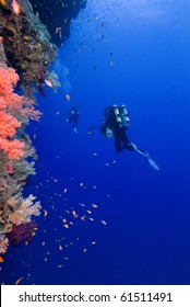 diver with colorful coral in the Red Sea