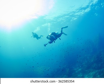 diver with giant fan coral and reef fish in Similan, Thailand