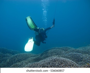 Diver holding surface marker buoy above coral
