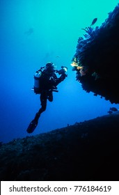 A diver illuminates some of the soft corals growing on the wreck of the Key Biscayne, Ledge Point, Western Australia.