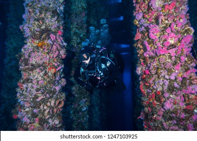 Diver Lisa navigates the Oil Rig structure at Long Beach California on November 10 2018
