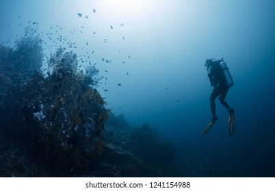 Diver in the ocean, Amed, Bali