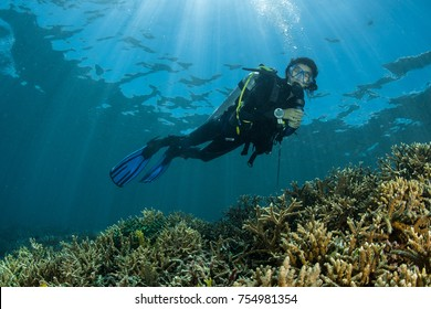 diver over a shallow coral reef with sun rays