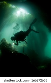 Diver in the river and jungle, Irian Jaya, le Passage