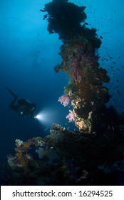 Diver shining light on vibrant coral living on the forward mast of a shipwreck.